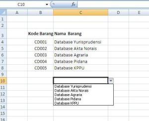 Hasil dari list yang dibuat dengan Data Validation